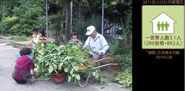 2008年夏 枝豆の収穫作業